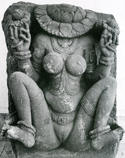 yoginiyoni
